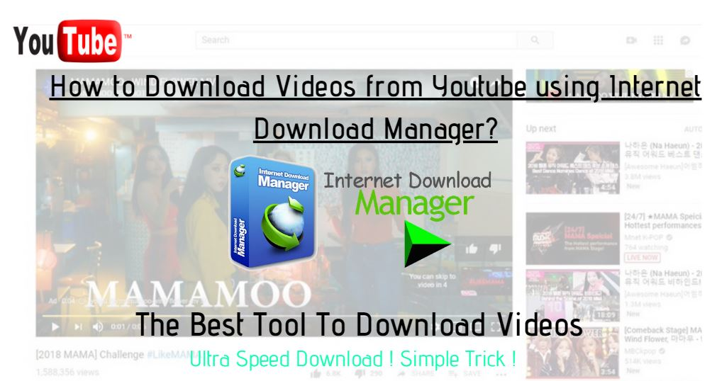 how to download videos from youtube using internet download manager