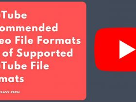 What are the Recommended Video File Formats Does YouTube Accept? | List of Supported YouTube File Formats